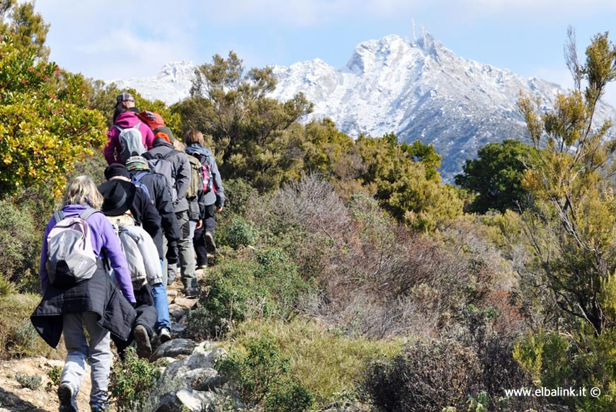 Trekking all'Elba